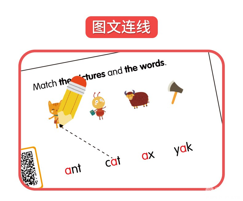 自然拼读卡片-详情_11.jpg