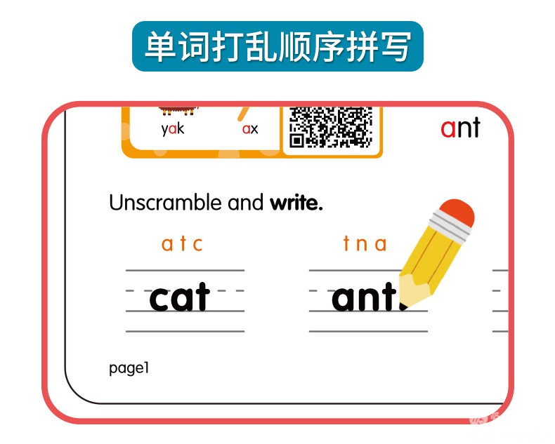 自然拼读卡片-详情_12.jpg